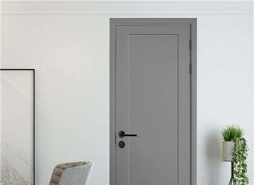 Why not opt for the fashion internal wooden door?